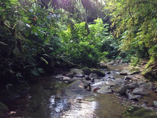 Pacuare Lodge : a walk to the waterfalls