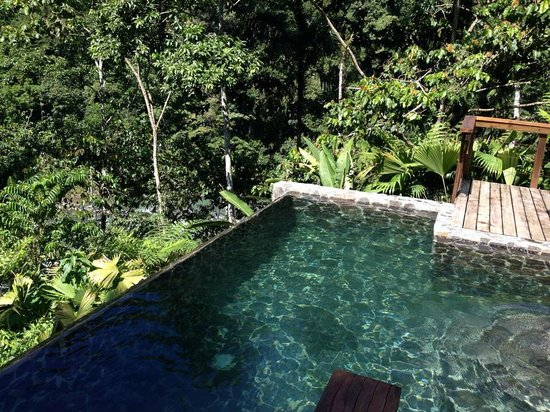 Pacuare Lodge: the little pool in the balcony