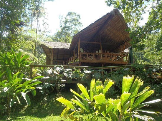 Pacuare Lodge : the lodge there is electricity there and wifii you can charge cellphones