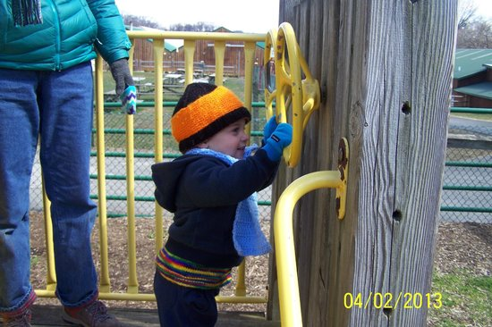 Linvilla Orchards: Steering the train