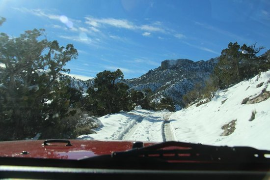 Las Vegas Rock Crawlers : View from the windshield