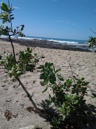 Occidental Tamarindo: relax
