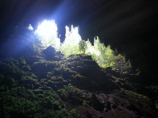 Parque de las Cavernas del Rio Camuy : Entrance to Cueva Clara