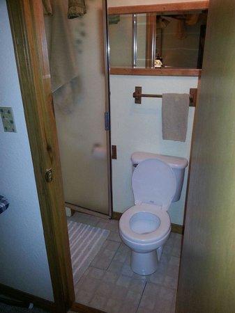 Eureka Springs Hideaway: Tiny Bathroom at the Hidaway