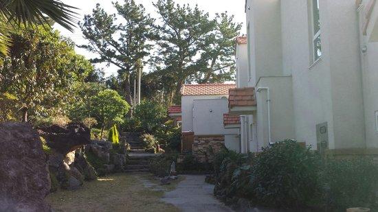 Memory In Jeju Pension: Surrounding