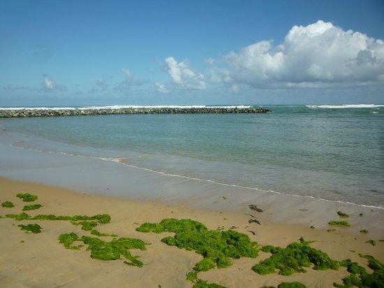 Embassy Suites by Hilton Dorado del Mar Beach Resort: Beach