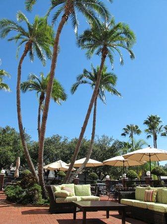 Hilton Garden Inn Tampa Ybor Historic District: Beautiful courtyard