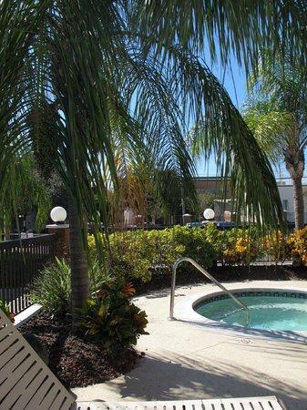 Hilton Garden Inn Tampa Ybor Historic District: Hot tub