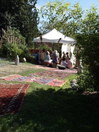TeaFarm : Moroccan tea experience