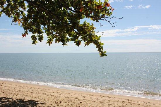 سيبوينت أون ترينيتي بيتش: Trinity Beach