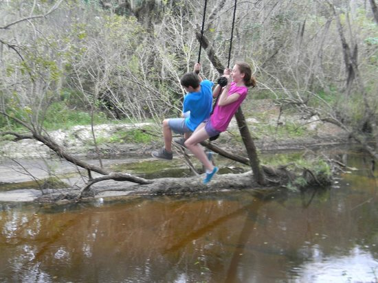 Canoe Outpost - Little Manatee River: Who doesn't love a good rope swing