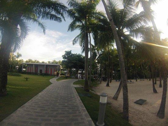 Hotel Riu Naiboa : Camino volviendo de la playa al hotel