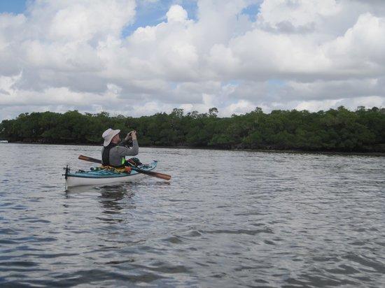 Everglades Area Tours: Guide