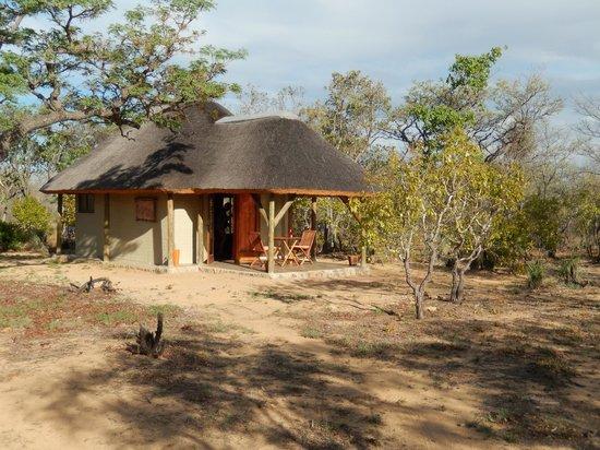 Ama Amanzi Bush Lodge: Lodge in de bush