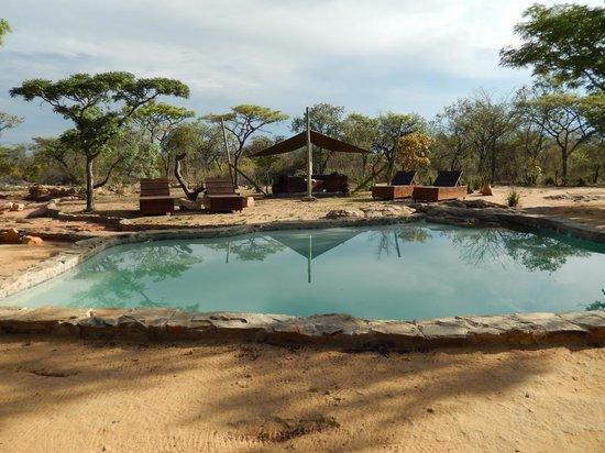 Ama Amanzi Bush Lodge: Zwembad