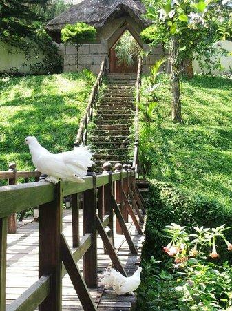 Shalimar Spice Garden - An Amritara Private Hideaway : Hotel Entrance