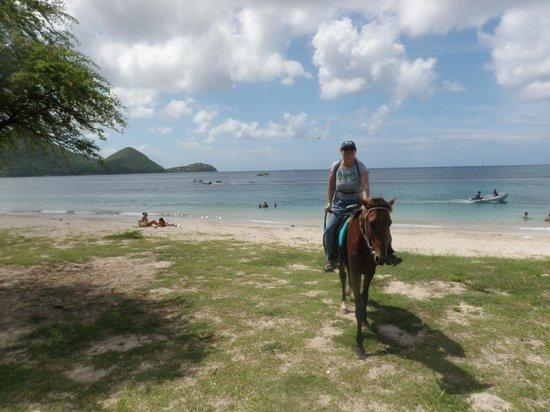 Island Riders : Caribbean riding