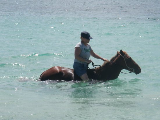 Island Riders : Into the sea