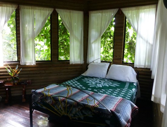duPlooy's Jungle Lodge : Interior view of the Tree House