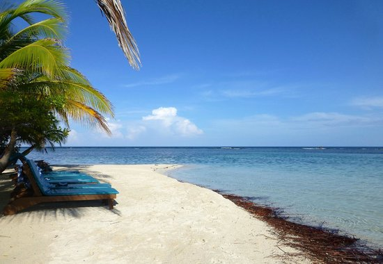Pelican Beach - South Water Caye : The picture perfect beach