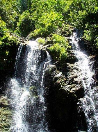 Guanaja, Honduras: The waterfalls