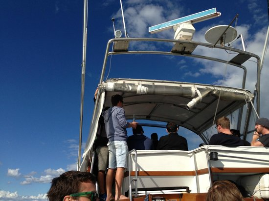 Charter Boats NZ: Room for up to 35 people