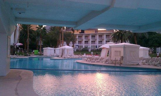 Swim up blackjack flamingo play free slots for fun bonus for Las vegas swimming pools open to public