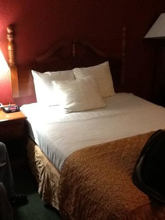 La Quinta Inn Richmond South: think u cud get some wrinkle-free bedskirts?