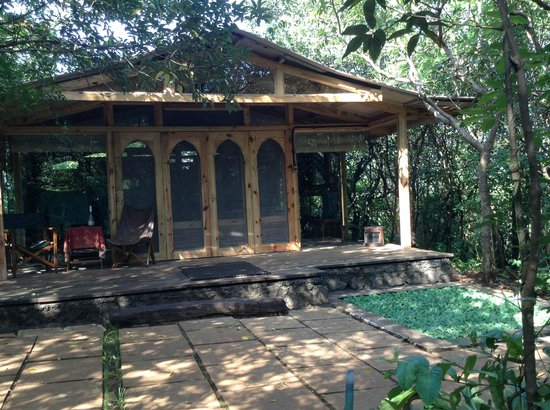 The Machan : Cabin in the woods
