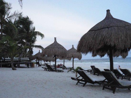La Zebra Colibri Boutique Hotel: Beach