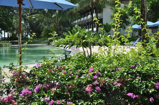 Amora Beach Resort: второй бассейн