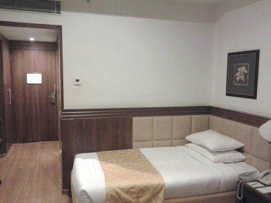 Hotel Regaalis: Room view 3