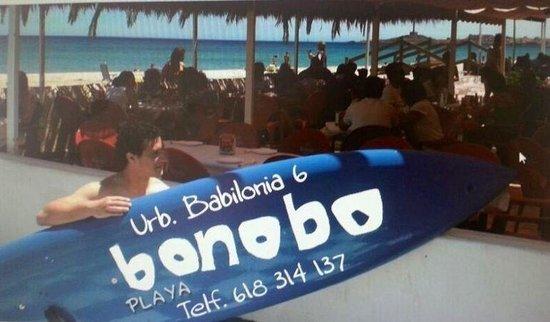 Bonobo La Manga: Bonobo