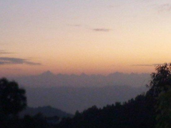Frozen Woods - Pura Stays: Sunrise