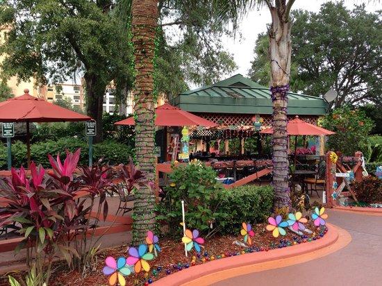Radisson Resort Orlando-Celebration: Outdoor