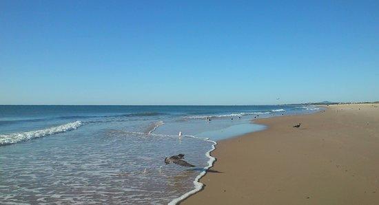 Eurotel Altura: playa frente al hotel