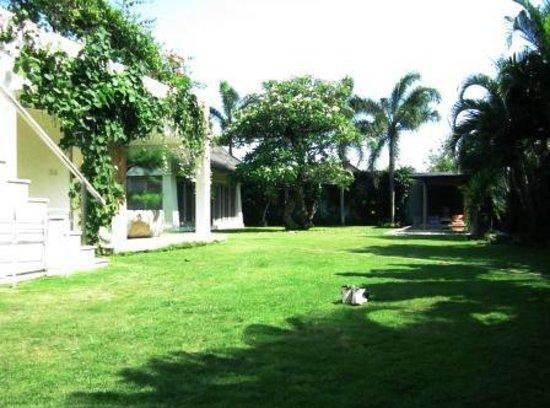 Villa Casa Mateo: Casa Mateo Back Garden