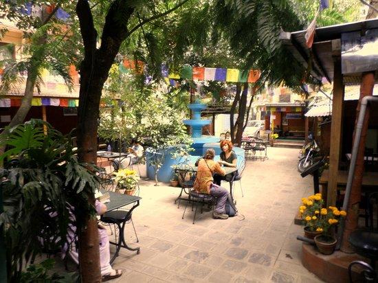 Pilgrims Guest House: Garden
