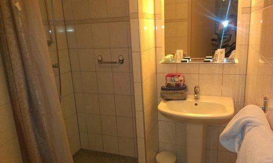Hotel Asterisk: Baño