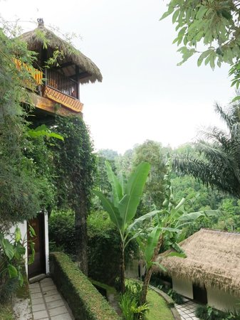 Nandini Bali Jungle Resort & Spa: View of cabana at pool