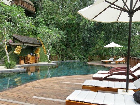 Nandini Jungle Resort & Spa Ubud: Pool