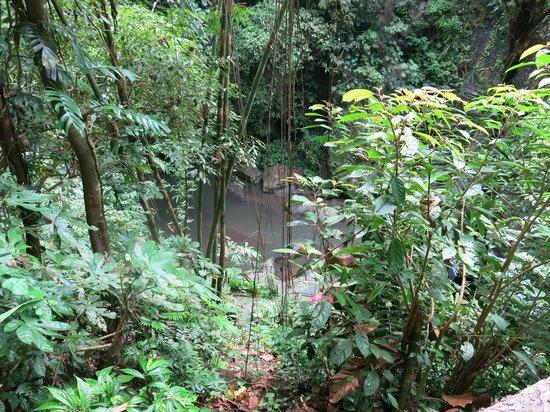 Nandini Jungle Resort & Spa Ubud: Jungle river