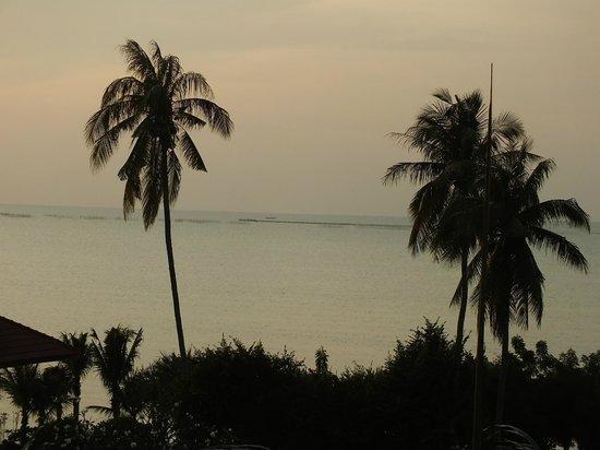 Bella Villa Cabana: Вечером