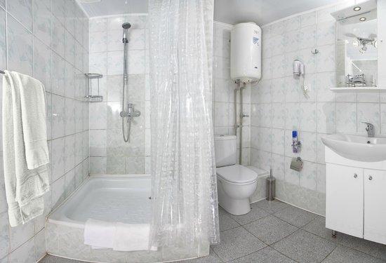 Volzhanka Hotel: Санузел