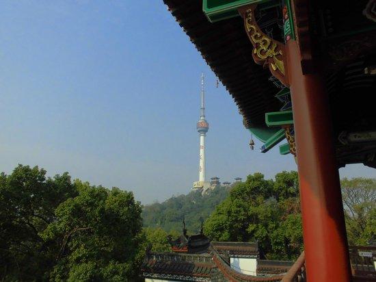 Qingchuan Cabinet : テレビ塔の眺め
