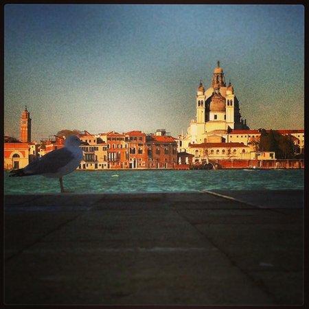 Generator Hostel Venice : La Chiesa di Santa Maria della Salute vista dalla Giudecca