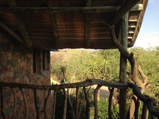 Mokolodi House: Balcony