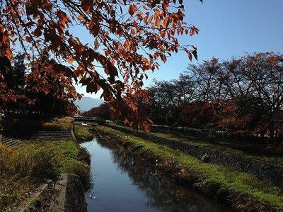 Kose Sports Park : 公園内の綺麗な景色