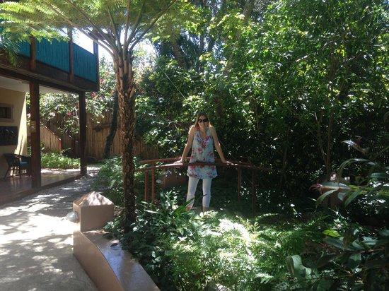 Face Tranquility B&B: Front garden