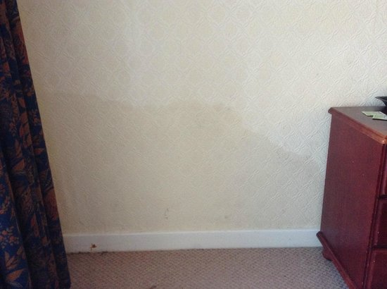Norbreck Castle Hotel: Disgusting! Photo of damp on wall in our room, no 20, Ground Floor Winsdor Wing, taken 24/11/13.
